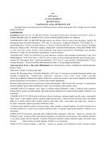 T.C. ANTALYA 13. İCRA DAİRESİ 2014/6973 ESAS TAŞINMAZIN