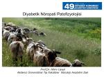 Diyabetik Nöropati Patofizyolojisi