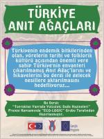 türkiye anıt ağaçlar dergisi