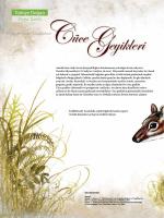 Türkiye Doğası Doğa Tarihi