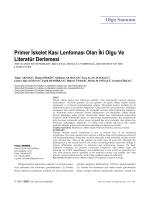 Primer İskelet Kası Lenfoması Olan İki Olgu Ve Literatür Derlemesi