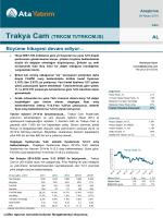 Trakya Cam (TRKCM TI/TRKCM.IS) AL Büyüme