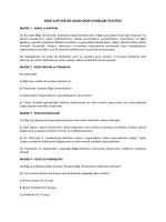 bilgi cup liseler arası spor oyunları statüsü