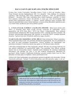 baca gazı flake kaplama teknik spektleri
