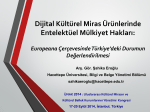 Intellectual property rights of digital cltural heritage works