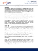Temel Bilgi Güvenliği-2