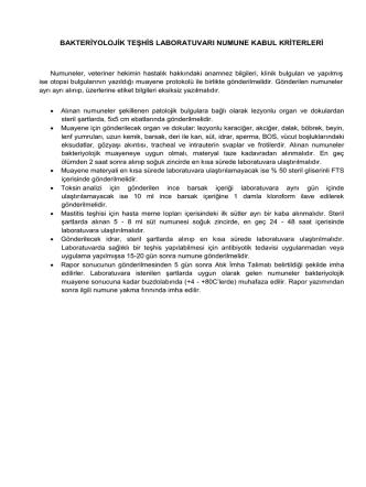 bakteriyolojik teşhis laboratuvarı numune kabul kriterleri