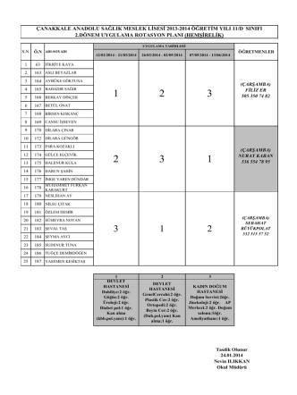 çanakkale anadolu sağlık meslek lisesi 2013