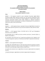 Hacettepe Üniversitesi Sağlık Bilimleri Enstitüsü Tez Çalışması