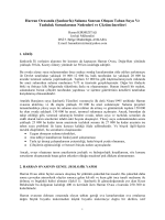 Şanlıurfa – Harran Ovasında Sulama sonucu oluşan
