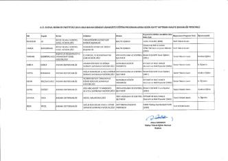 a.ü. sosyal bilimler enstitüsü 2013