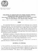 Full Text (PDF)