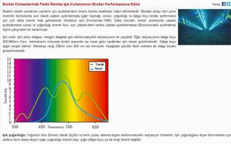 Broiler Kümeslerinde Farklı Renkte Işık Kullanımının