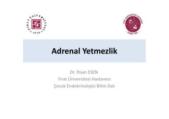 Adrenal Yetmezlik