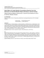 Description of Larger Benthic Foraminifera Species
