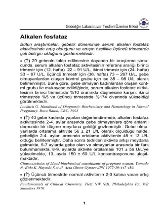 Alkalen fosfataz