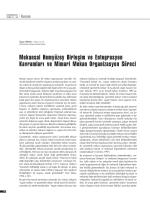 Mekânsal Hemyüzey Birleşim ve Entegrasyon