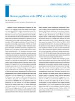Human papilloma virüs (Hpv) ve erkek cinsel sağlığı