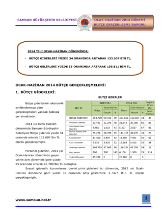 2014 Ocak-Haziran Bütçe Gerçekleşme Raporu