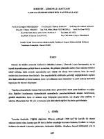 Mersin-Limonlu Havzası Lamas Hidroelektrik Santralleri
