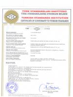 TSE (2014)