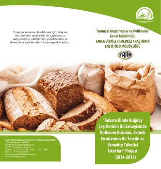 Ankara İlinde Buğday Çeşitlerinin Un Sanayisinde Kullanım Durumu