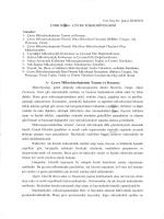 Ders Notu - Çevre Mühendisliği Bölümü