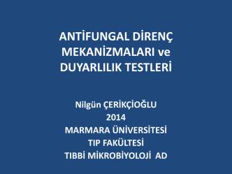 Antifungal Direnç Mekanizmaları ve Duyarlılık Testleri, Nilgün