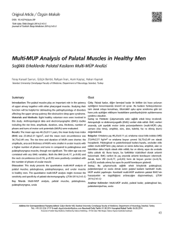 Multi-MUP Analysis of Palatal Muscles in Healthy Men