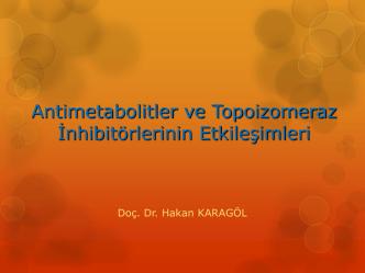 Antimetabolitler ve Topoizomeraz İnhibitorlerinin Etkileşimleri