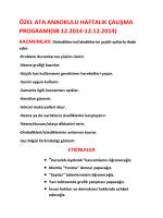 ÖZEL ATA ANAOKULU HAFTALIK ÇALIŞMA PROGRAMI(08.12