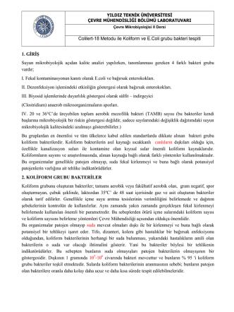Colilert-18 Metodu ile Koliform ve E.Coli grubu bakteri tespiti