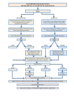 Revize Bütçe Ve Ek Bütçe İş Akış Şeması