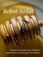 Robot Arılar (Pdf.)