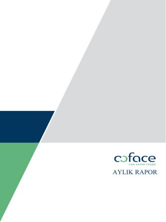 Coface Ağustos 2014 Ekonomi Raporu
