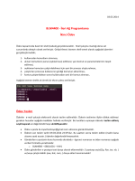 BLM4400 - İleri Ağ Programlama İkinci Ödev Ödev Teslim