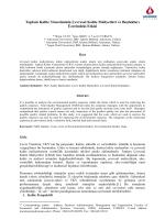 Toplam Kalite Yönetiminin Çevresel Kalite Maliyetleri