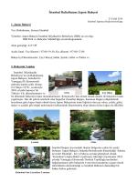 İstanbul Baltalimanı Japon Bahçesi