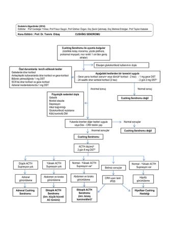 Cushing Sendromu ile uyumlu bulgular