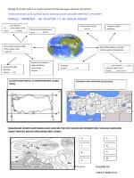 4)Aşağı da verilen kelime ve sayıları kavram haritasında