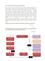 Münferit Bağlantı İş Planları