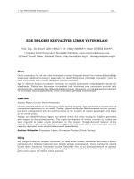 ege bölgesi kruvaziyer liman yatırımları