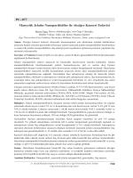 PC–077 Manyetik Jelatin Nanopartiküller ile Akciğer Kanseri Tedavisi