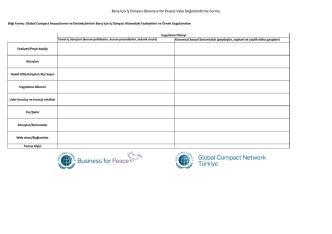 Barış İçin İş Dünyası (Business for Peace) Vaka Değerlendirme Formu