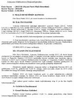 2013/10 (Siyasi Parti Mali Denetimi)