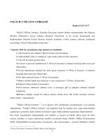 TEKÂLİF-İ MİLLİYE EMİRLERİ - Uluslararası İlişkiler Öğrenci Dergisi