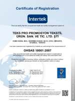 Certificate of Registration - Teks-Pro Promosyon Tekstil Ürünleri San