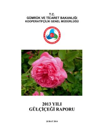 2013 Gülçiçeği Raporu - Gümrük ve Ticaret Bakanlığı Kooperatifçilik