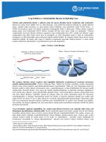 Vergi Politikası ve Sürdürülebilir Büyüme ile İlgili Bilgi