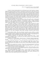 8 - Tulin Candemir